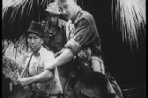 Malayan Jungle Fighting